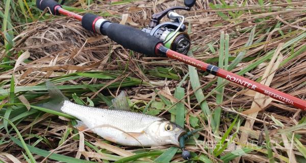 Предучебная рыбалка