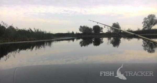 Отчет о рыбалке 29.08.2017