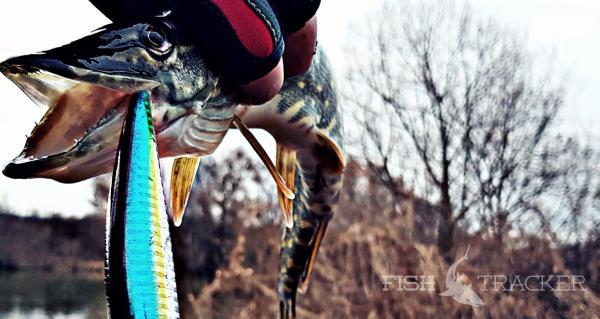 последние новости с рыбалки на москва реке