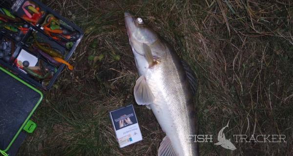 Отчет о рыбалке 03.01.2018