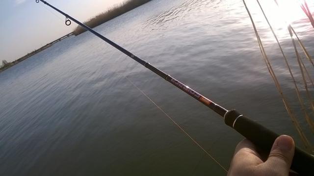 Рыболовный отчет Владимир  Савельев Спиннинг в запрет