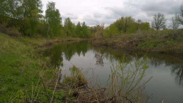 Рыболовный отчет Александр  Французов  Прелести малой реки