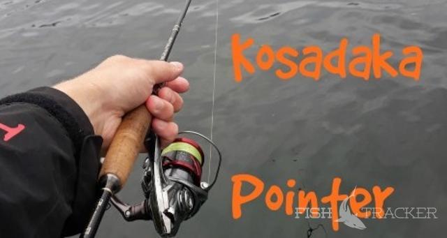 Обзор спиннинга для микроджига Kosadaka Pointer 183UL