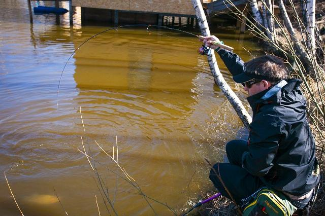 Рыболовный отчет Денис Вихров В Пасху за форелью