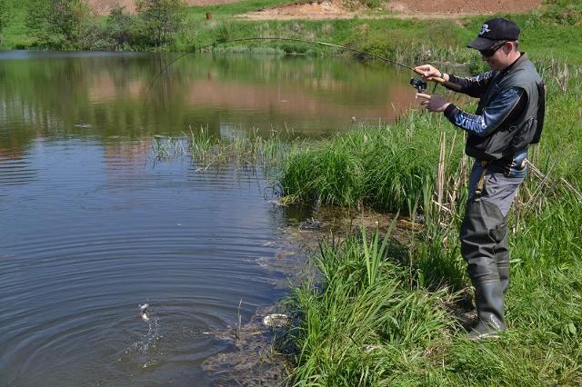 Рыболовный отчет Денис Вихров Совсем другое поведение окуня