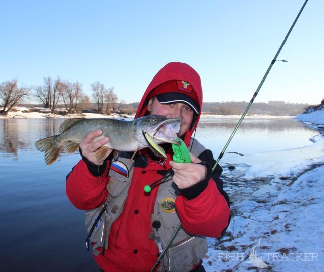 Ловля щуки на реке спиннингом и на живца