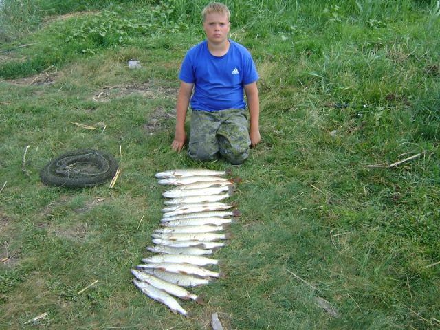Рыболовный отчет Саша Стюхин Джиговая щука