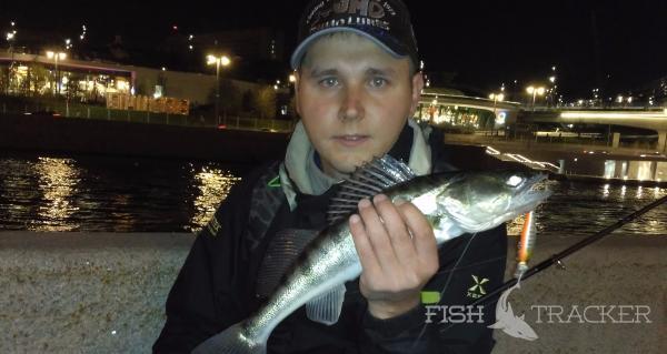 Рыбалка выходным днем. StreetFishing