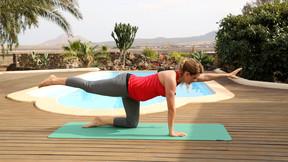 Fitness für Schwangere - Komplettprogramm