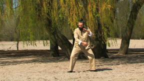 Vollendete Tai Chi Form
