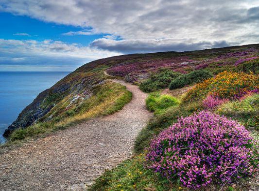 Dublin Walks and Hikes