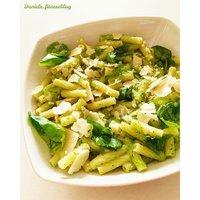 Zucchina-img-8