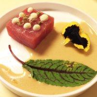 Filetto di tonno rosso in salsa di vitello