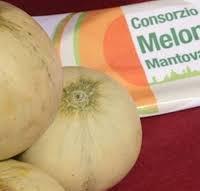 Melone mantovano IGP-img-1