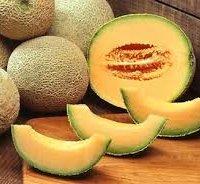 Melone mantovano IGP-img-2