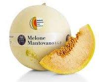 Melone mantovano IGP-img-6