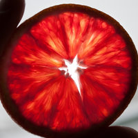 Arancia rossa di Sicilia IGP-img-3