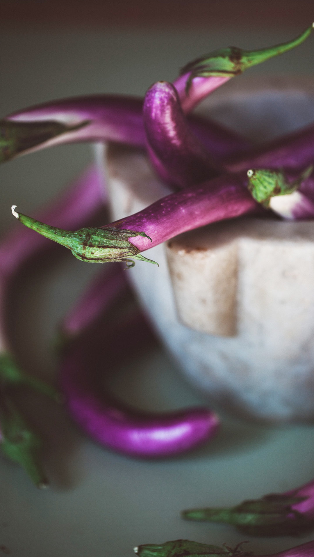 Perlina eggplant