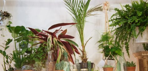 Floom Botanique Workshop Flowers Bouquet Shop Owners 2