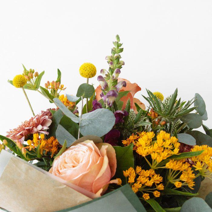 Floom Botanique Workshop Esclepias Craspedia Rose 4