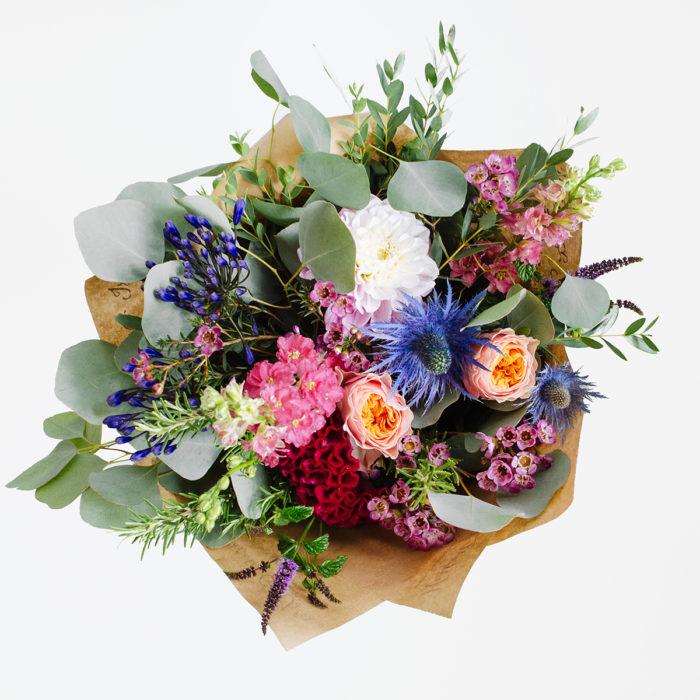 Floom Herbert Isles Rose Larkspur 2