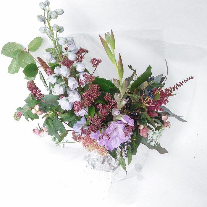 Floom Serendipity Botanistnationwide Delphinium 2