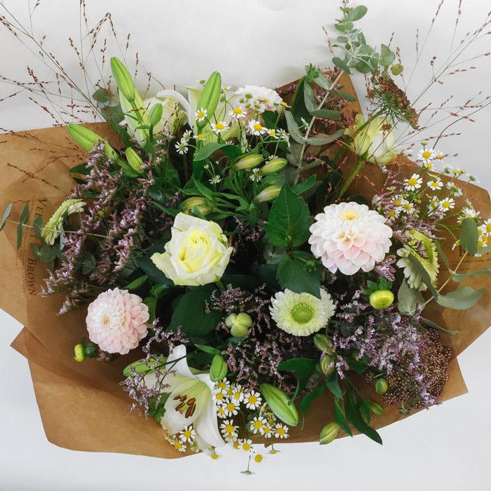 Floom Velvet Brown Dahlia Lily 2