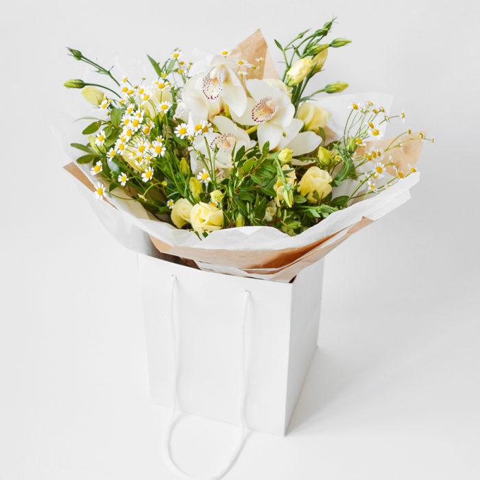 Floom Webb Farrer Porcelain 1