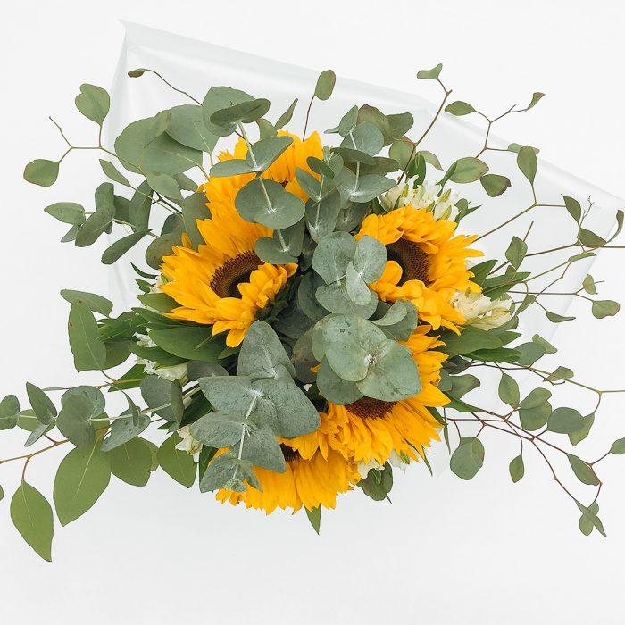 Floom With Fairest Flowers Sunflower 2