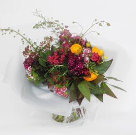 Floom Serendipity Botanist Ranunculus Sweet William 1