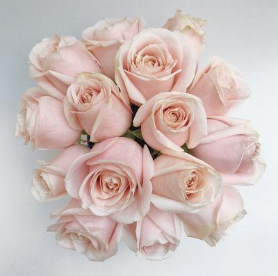 Floom Shilpa Reddt Pink Rose Silver Vase 3