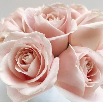 Floom Shilpa Reddt Pink Rose Silver Vase 4