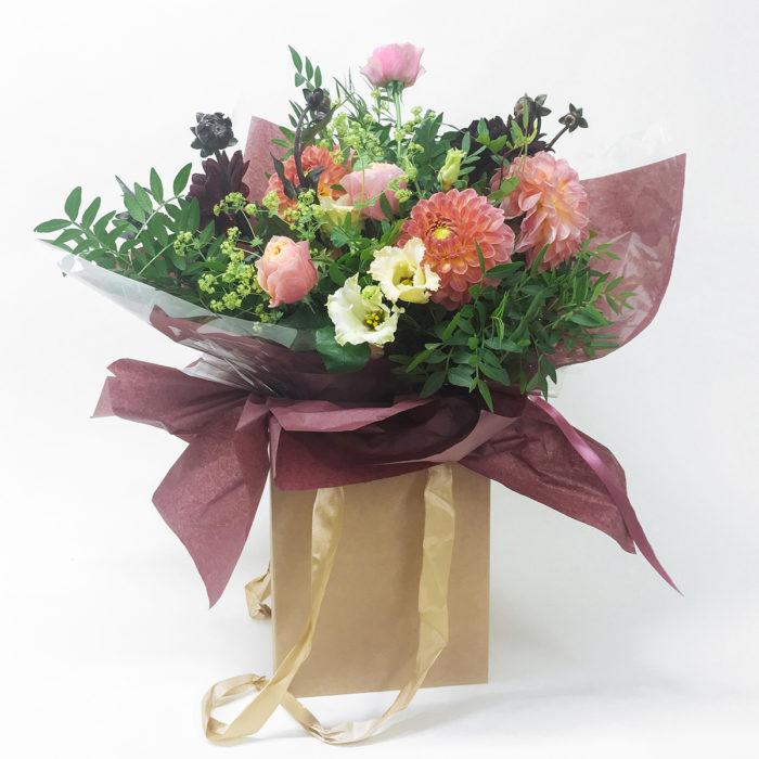Floom Bloomologie Coco Dahlia 1 1