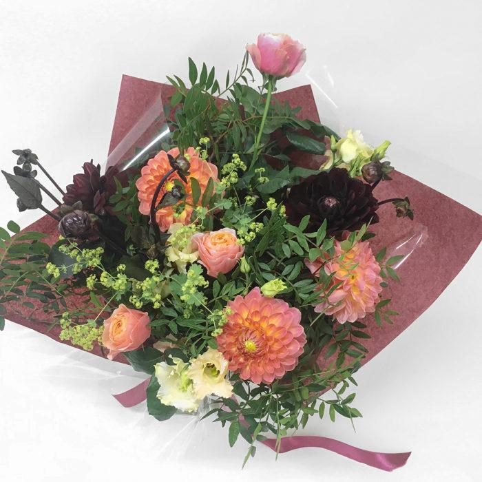 Floom Bloomologie Coco Dahlia 2 1