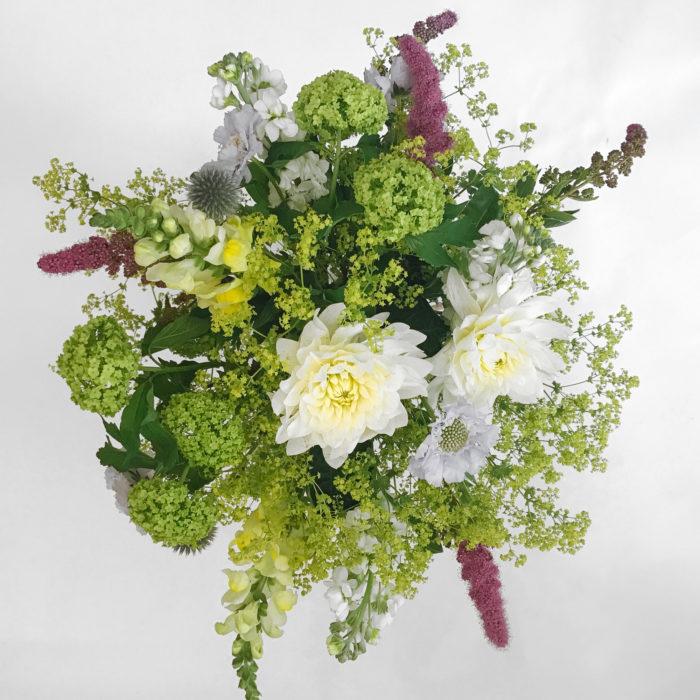 Floom Botanique Dahlia Scabious 2