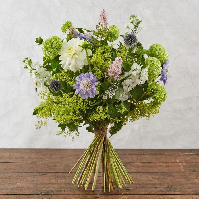 Floom Botanique Dahlia Scabious 3