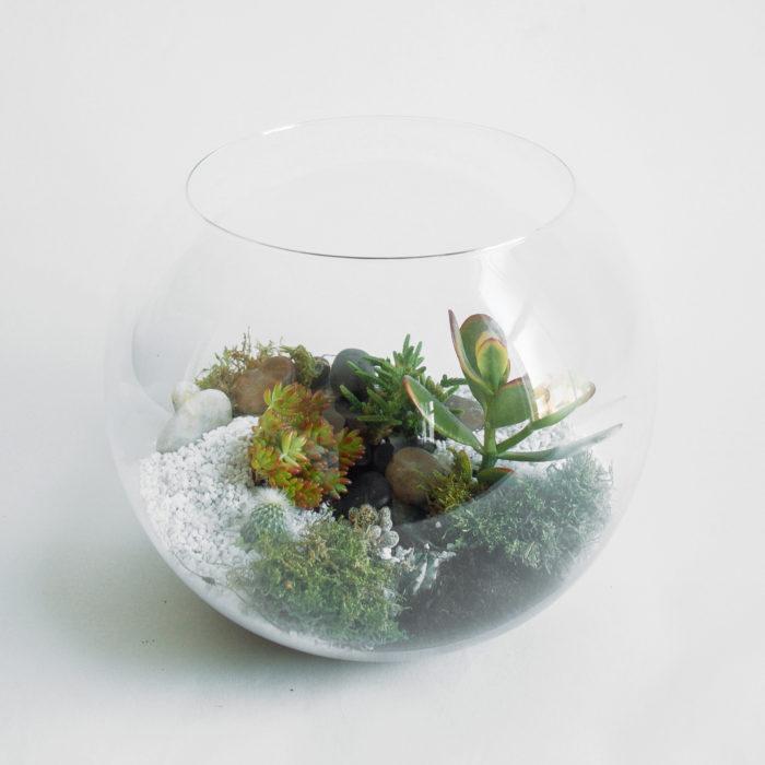Floom Design By Nature Terrarium Succulent 1