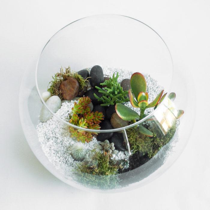 Floom Design By Nature Terrarium Succulent 2