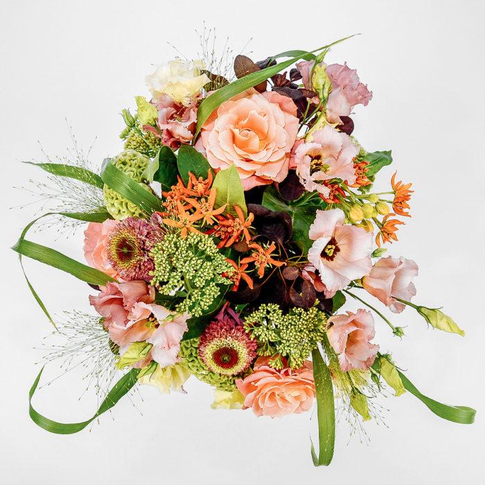 Floom Mad Lilies Indian Summer 2