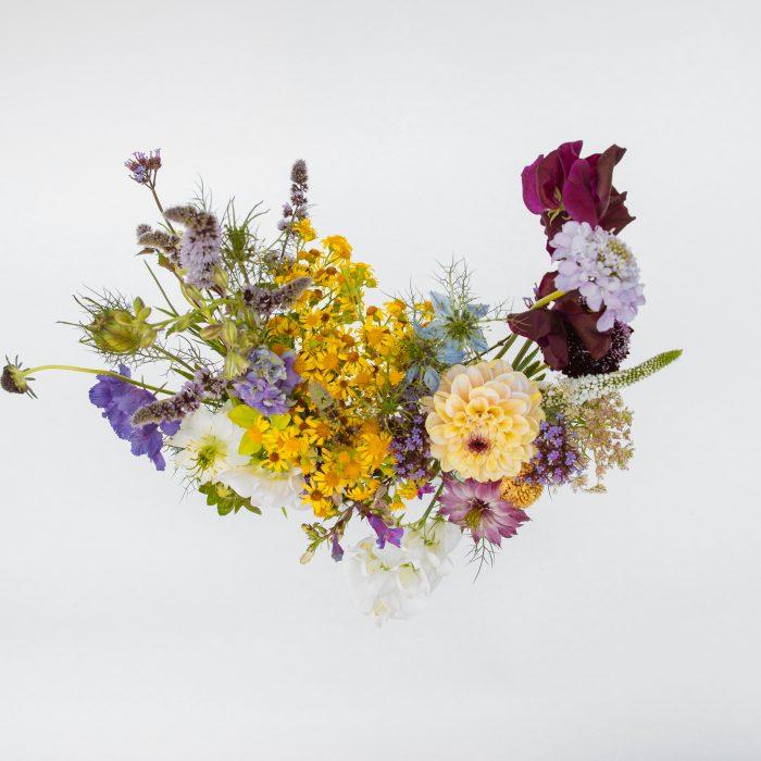 Floom Serendipity Botanist Milk Bottles 2