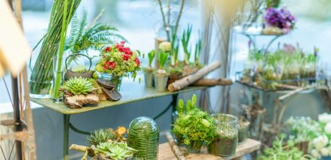 Floom Zita Elze Studio2