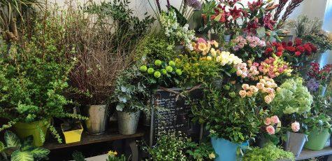 Floom Brighton Flower Co Studio 2
