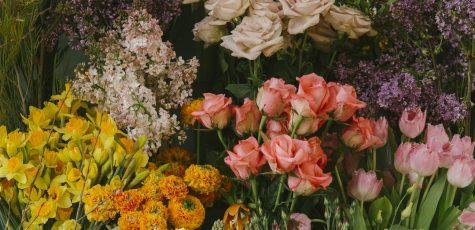 Floom Defauld Studio Photo 2