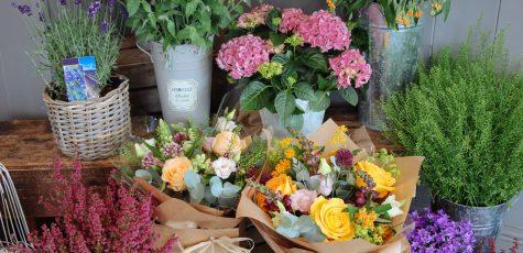 Floom Edwards Flowers Studio 2