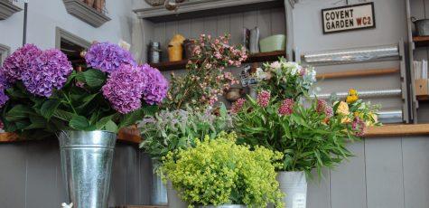 Floom Edwards Flowers Studio 3
