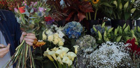 Floom Queens Park Florist Studio 3