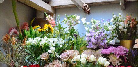 Floom Belle De Jour 3