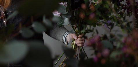 Floom Bloomologie 2