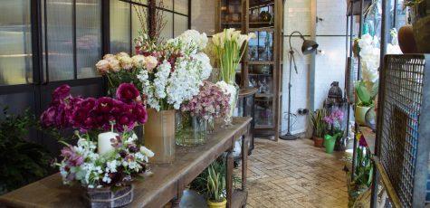 Floom Jamie Aston Studio 3B