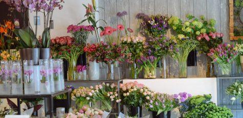 Floom Lansdowne Florist Studio 2